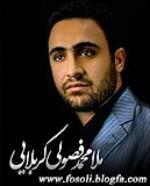 محمد فصولی الکربلایی - شب بیست و سوم رمضان 1394