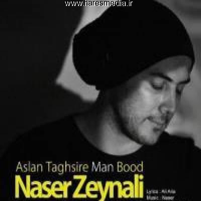 دانلود آهنگ جدید اصلا تقصیر من بود از ناصر زینعلی