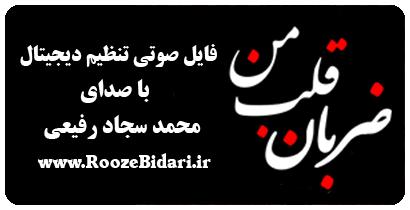 فایل صوتی تنظیم دیجیتال ضربان قلب من - محمدسجاد رفیعی